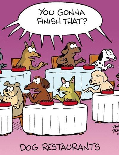 Dog Restaurants…