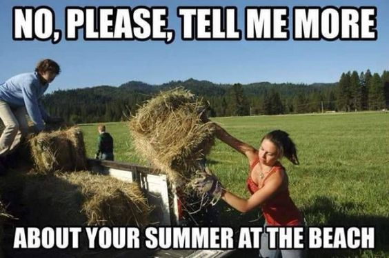 no-please-tell-me-more-about-your-summer-at-the-beach-farming-memes